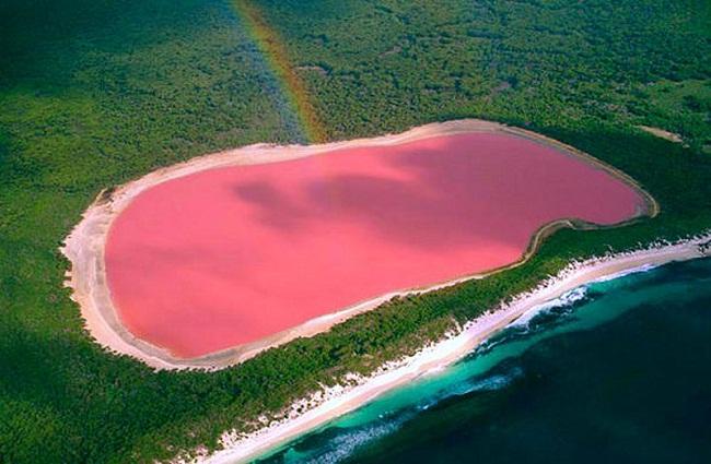INSÓLITO/ Cuando crees que lo conocías todo, aparece un lago de color rosa