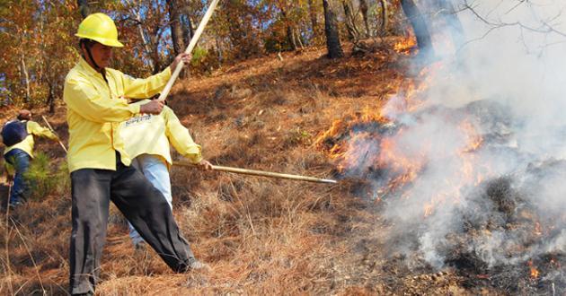 Piden decretar día del Brigadista Forestal en Coahuila