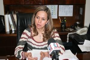 Teresa Guajardo Berlanga, Presidenta ICAI
