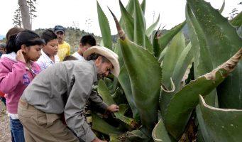 Por subejercicio pierde Coahuila recursos para el campo