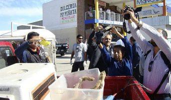 Verifican en Coahuila negocios de comida oriental
