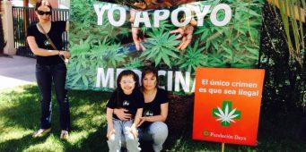 La marihuana con fines medicinales