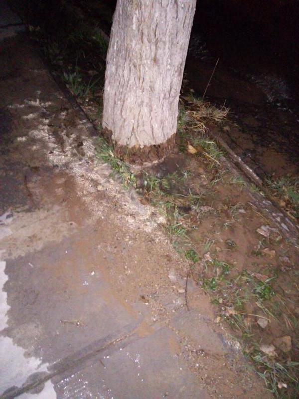 Fuga de agua en Fraccionamiento Jardines Coloniales