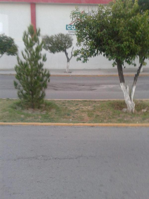 Baches en bulevar Nazario Ortiz