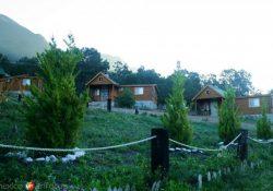 Propietarios de cabañas adeudan 10 mdp al Municipio de Arteaga