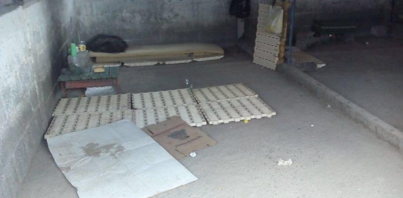 Rescata gobierno de Coahuila a 54 niños explotados en rancho agrícola