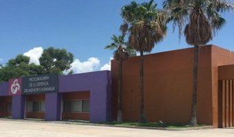Desmantelan red de tráfico de niños en Sonora