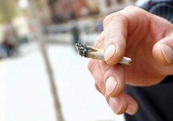 Rechaza Foro Nacional de Periodistas falso debate sobre la mariguana