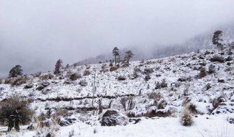Desciende el termómetro en medio país; prevén nevadas en 2 entidades y heladas en 16