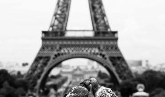 Las 15 imágenes que demuestran que el amor si existe