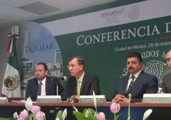 PROFEPA niega ecocido o devastación por obras en Manglar Tajamar de Cancún