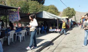 Retiran a 5 menores trabajando del mercado rodante Guayulera