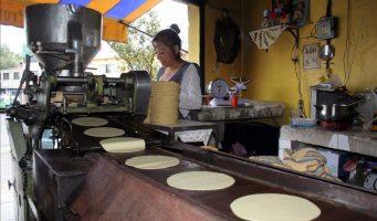 Aumentan productores el precio de la tortilla en SLP