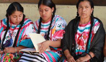 Comisión Indígena gasta más de mil 100 millones en un año, pero no en los indígenas