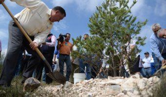 """Inicia Municipio """"Muro Verde"""" de protección a Zapalinamé"""