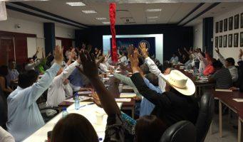 Consejo estatal del PAN aprueba alianzas en 2017
