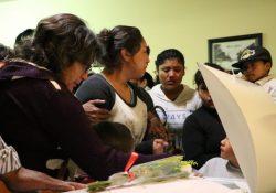 Dueña de pitbull deberá indemnizar a familia de Iker con 800 mil pesos