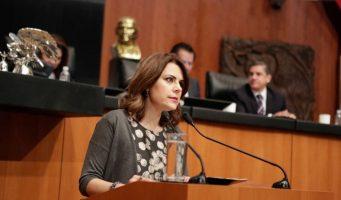 México solidario con el pueblo venezolano: Hilda Flores