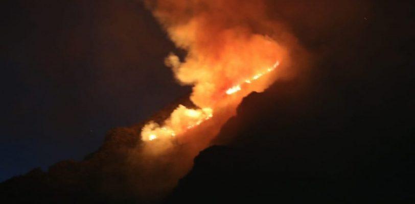 Combaten incendio en Zapalinamé 118 brigadistas, apoya helicóptero de Nuevo León