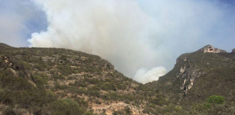 Fogata provocó incendio en Sierra Zapalinamé, detienen a cinco