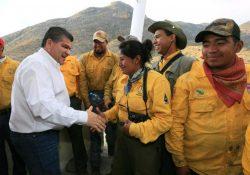 Controlado al 100 por ciento incendio forestal de la Sierra de Zapalinamé