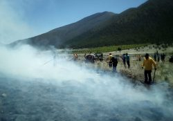 Controlan incendio en Los Lirios
