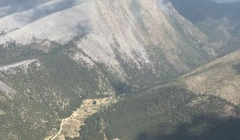 Liquidan incendio forestal en Sierra de Arteaga