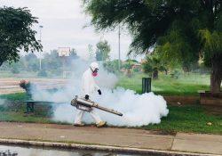 Exhorta Secretaría de Salud a prevenir casos de dengue