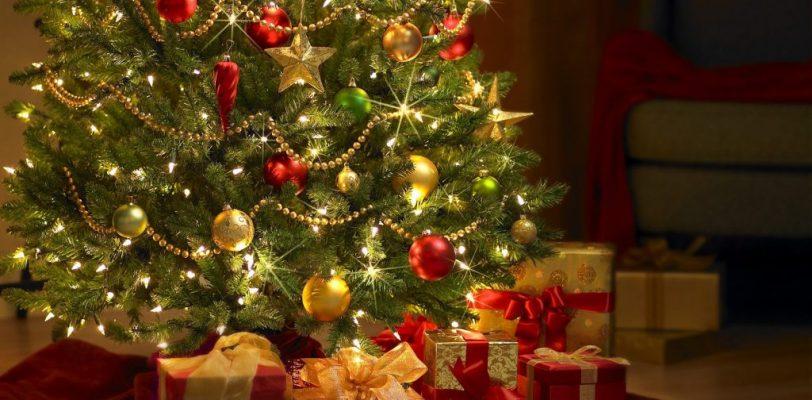 Exhorta Protección Civil a prevenir accidentes con pinos navideños