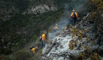 Controlan un 80% del incendio forestal en Arteaga