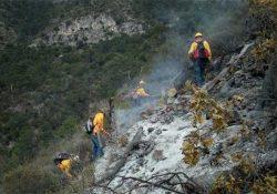 Casi extinto incendio en la Sierra de Arteaga