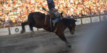 Inicia el Rodeo Saltillo Expo and Fest 2019