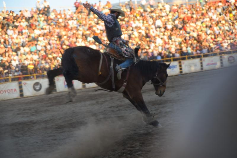 Inicia el Rodeo Saltillo Expo and Fest 2019