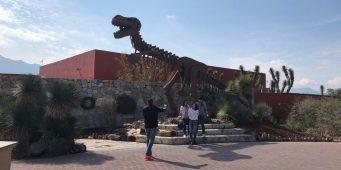 Invita Museo del Desierto a Noche de las Estrellas