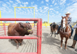 Rodeo Saltillo 2020 posiciona a Coahuila en materia de turismo