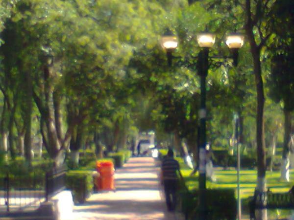 Lámparas en Alameda encendidas de día