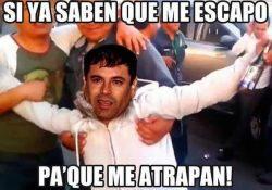 "Los #memes sobre la recaptura del ""El Chapo"""