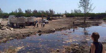 (VIDEO) Destruyen más de 90% del manglar Tajamar en Cancún; asociaciones crean petición para detener las obras