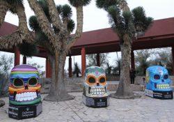 """""""Calaveras Saraperas"""" están exhibidas en el Museo del Desierto"""
