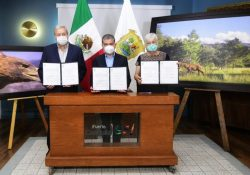 Coahuila suma 4 reservas naturales voluntarias más