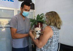 Centro Veterinario Municipal brinda servicio a bajo costo a mascotas