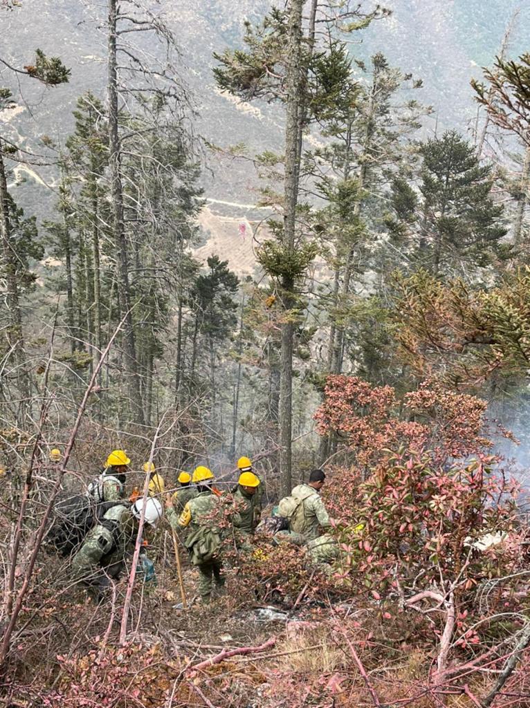 Suma Coahuila brigadistas a labores de liquidación del incendio en la Sierra de Arteaga