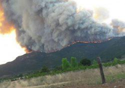 Son de Nuevo León responsables del incendio de Arteaga, hicieron carne asada