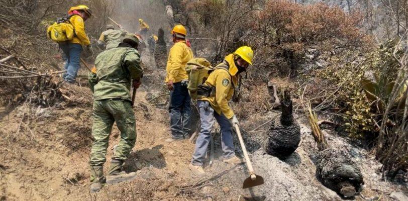 Controla Coahuila al 100% incendio en la Sierra de Arteaga; felicita MARS brigadistas