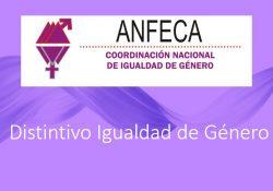 """Promueve directora del IIDIMU la Obtención del Distintivo """"Equidad de Género ANFECA"""""""