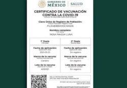 Plantean sea obligatorio certificado de vacunación para ingreso a bares, estadios y eventos sociales
