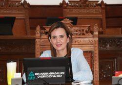 Aprueban reformas a la Ley de Ingresos Arteaga sobre estímulos a organizaciones civiles